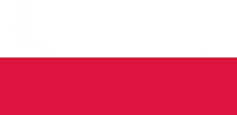 Polnische GmbH (Spol z.o.o. )